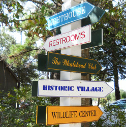 There's much to do in Corolla. The hard part is deciding which direction to go in.
