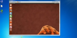 How to Use VNC Viewer in Ubuntu
