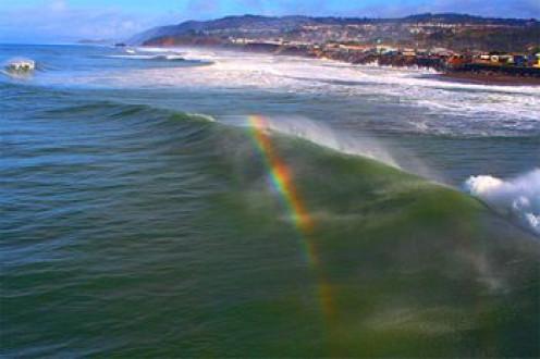 Sea Spray Bow