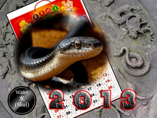 The Snake Year of 2013 has Water as its element and black as its color