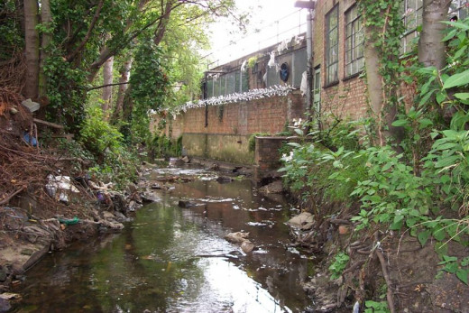 Much of this creek or brook was concreted as a storm-water channel, whilst other sections lay open and untouched.