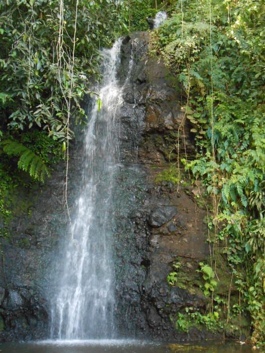 Waterfall in Tahiti!