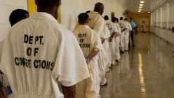 Jails vs. Prisons