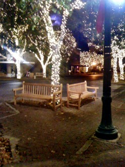 Christmas Lights in Georgetown, Texas