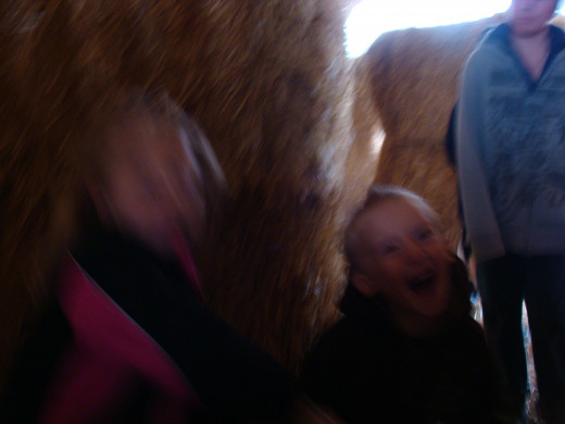 Although this picture is blurry, it shows the giggling fun that we had chasing each other in the straw maze!