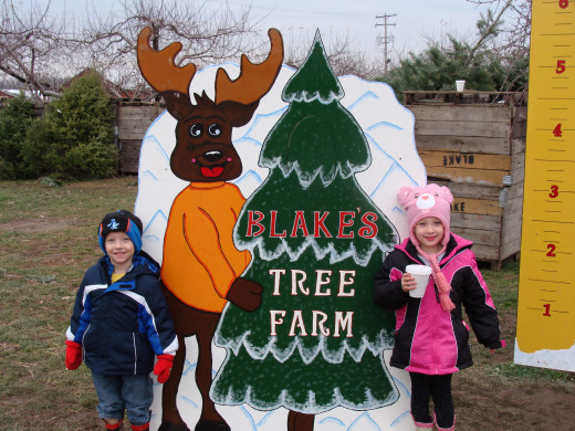 Blake Farms U-Cut Christmas Trees