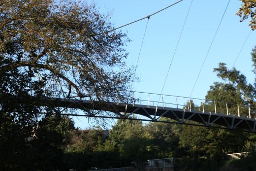the Suspension Bridge at Falls Park