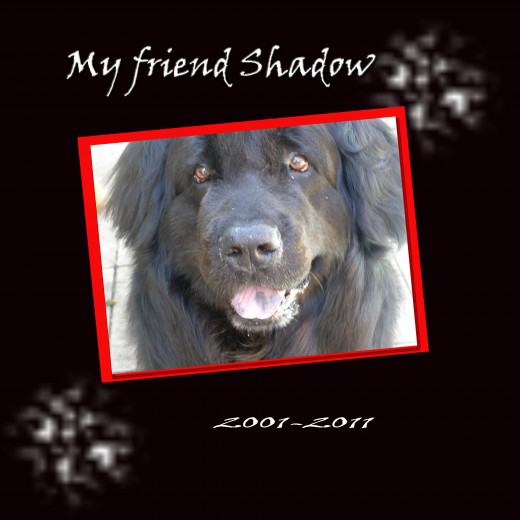 A very simple scrapbook page I made about my lovely Newfoundland Dog, Shadow.  His collar was red, hence the red accent on the page.