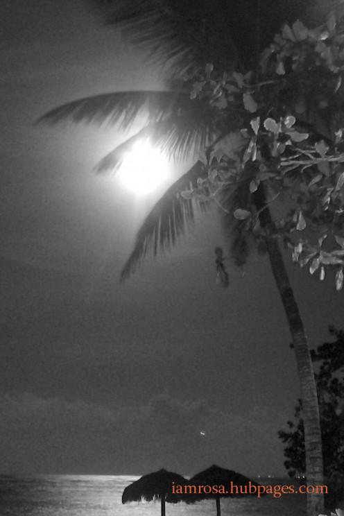 The moon at night.