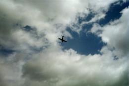 fear of flying?