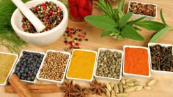 Top Five Indian Resturants in Denver Colorado