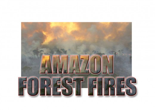 The continuing drought in the Amazon creates the potential for devastating forest fires adding to global climate change.