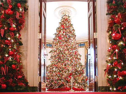 This is one of the magnificant trees in the White House.