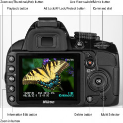 How to choose a good digital SLR camera for beginners