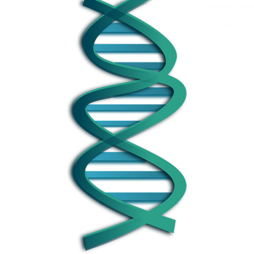 The genetic screening is an important part in the egg donation process.