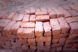 Bricks made from the clay from the ant hill. The quality will vary.