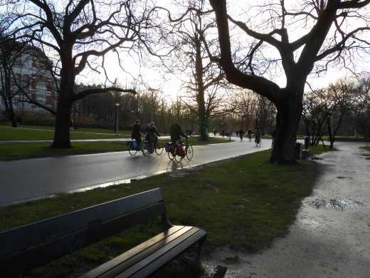 Bikes are used for recreation sometimes. Here's bicyclists riding through the famous Vondel Park. They have a nicer bike path than the pedestrians. There's is the muddy path on the right!