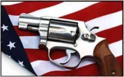 Should those with no knowledge about firearms have a voice about weapons in American society?