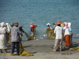 Fishermen hand-in-hand pulled their catch to the shore.