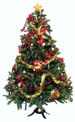 Saturday Night Live (SNL) - The Killer Christmas Trees