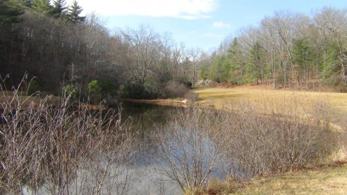 The peaceful serenity of Little Glade Mill Pond.