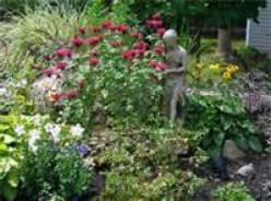 My Garden of Life