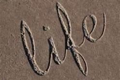 Life Has No Script