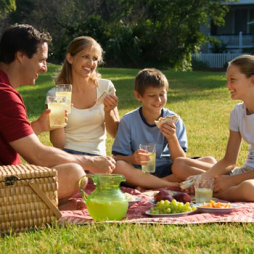 A family having fun on a picnic
