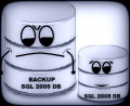 How to Backup a SQL Server 2005 Database