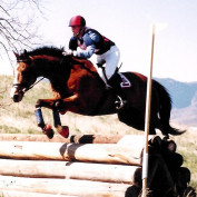 EquestrianAcademy profile image