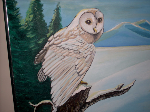 a wise owl watches