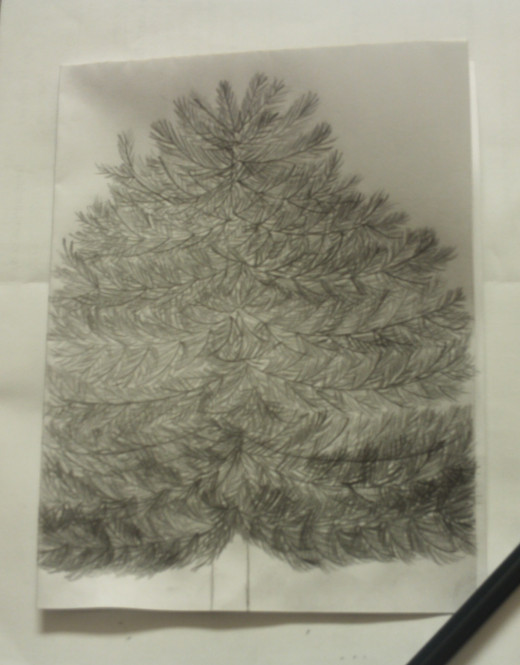 I get excited as I finish up my drawing of the tree.