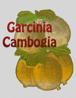 How to Lose Weight with Garcinia Cambogia