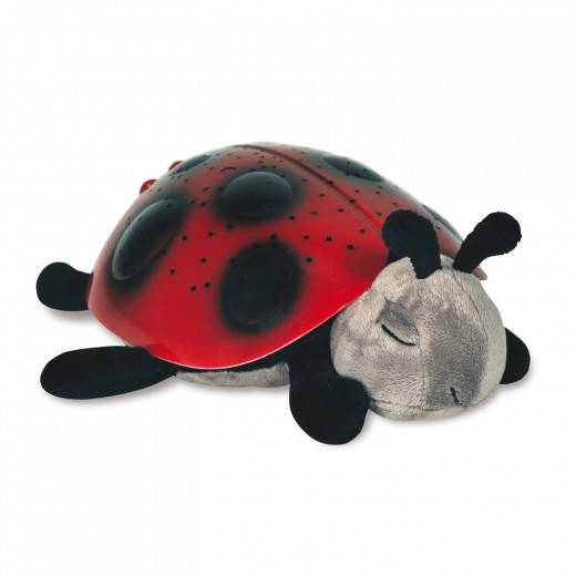 Cloud b Lady Bug