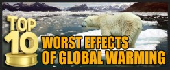 Top 10 Worst Effects of Global Warming