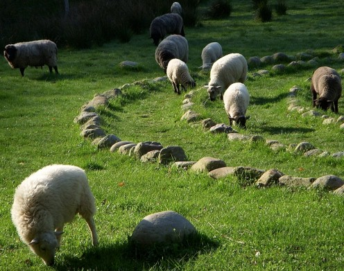The writer came across this stone labyrinth in a sheep pasture in northern Germany.