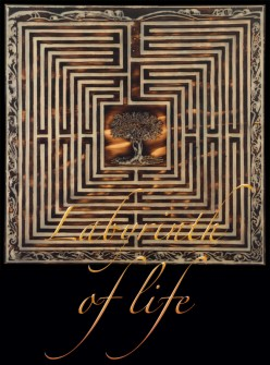 Labyrinth of Life