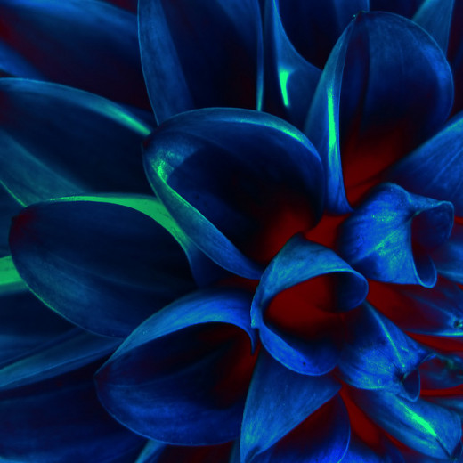 Blue isn't always melancholy