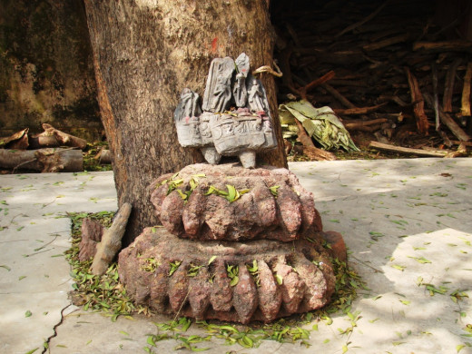 Broken stone idols at the base of a Neem (Margosa) tree; Maluti