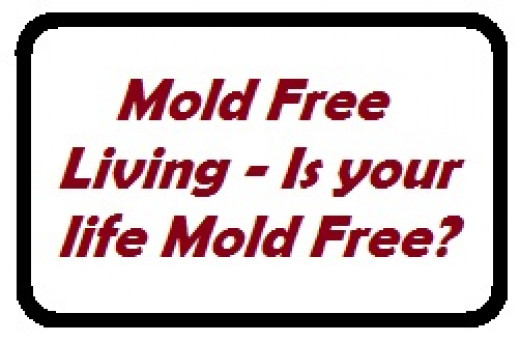 Do a mold assessment of your home to find out if your health is being affected by the mold in your home.