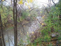 East Don River, Charles Sauriol Conservation Area, Toronto