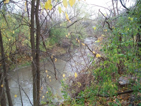 East Don River, Charles Sauriol Conservation Area, Toronto