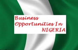 Hot Business Opportunities In Nigeria