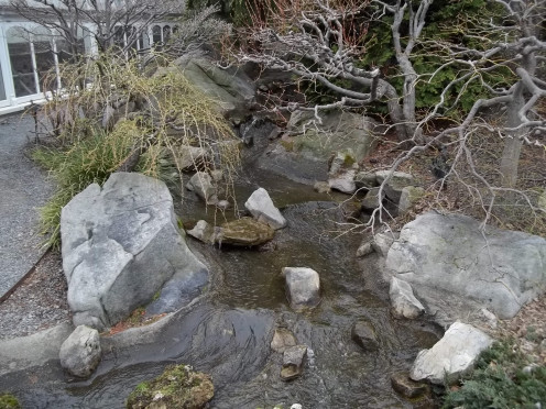 A winter's view of the Japanese Courtyard Garden at Phipps Conservatory.