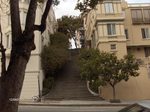 Joyce and Pine Streets