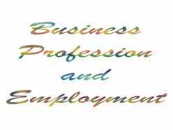 Major differences between Business Profession and Employment
