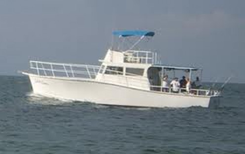 Fishing in the Gulf Coast is a big part of an Orange Beach Alabama vacation. Deep sea fishing cruises are located in Orange Beach.