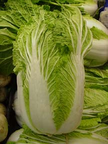 """Chinese Cabbage."" I like to shred this vegetable for use in egg rolls."