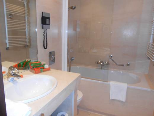 View of the bathroom with a shower door that swings out.
