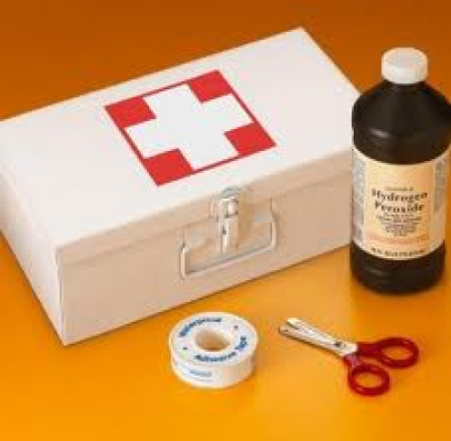 A First Aid kit is a very important item to bring with you on any camping trip.  If an emergency arises this item will be very helpful.